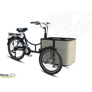 Bikelec Hermes Mini