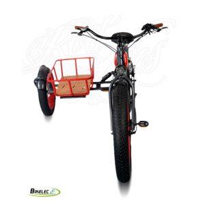 Bikelec Sidecar Electrico Dr Jones