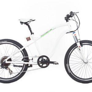 Ecobike Adventure